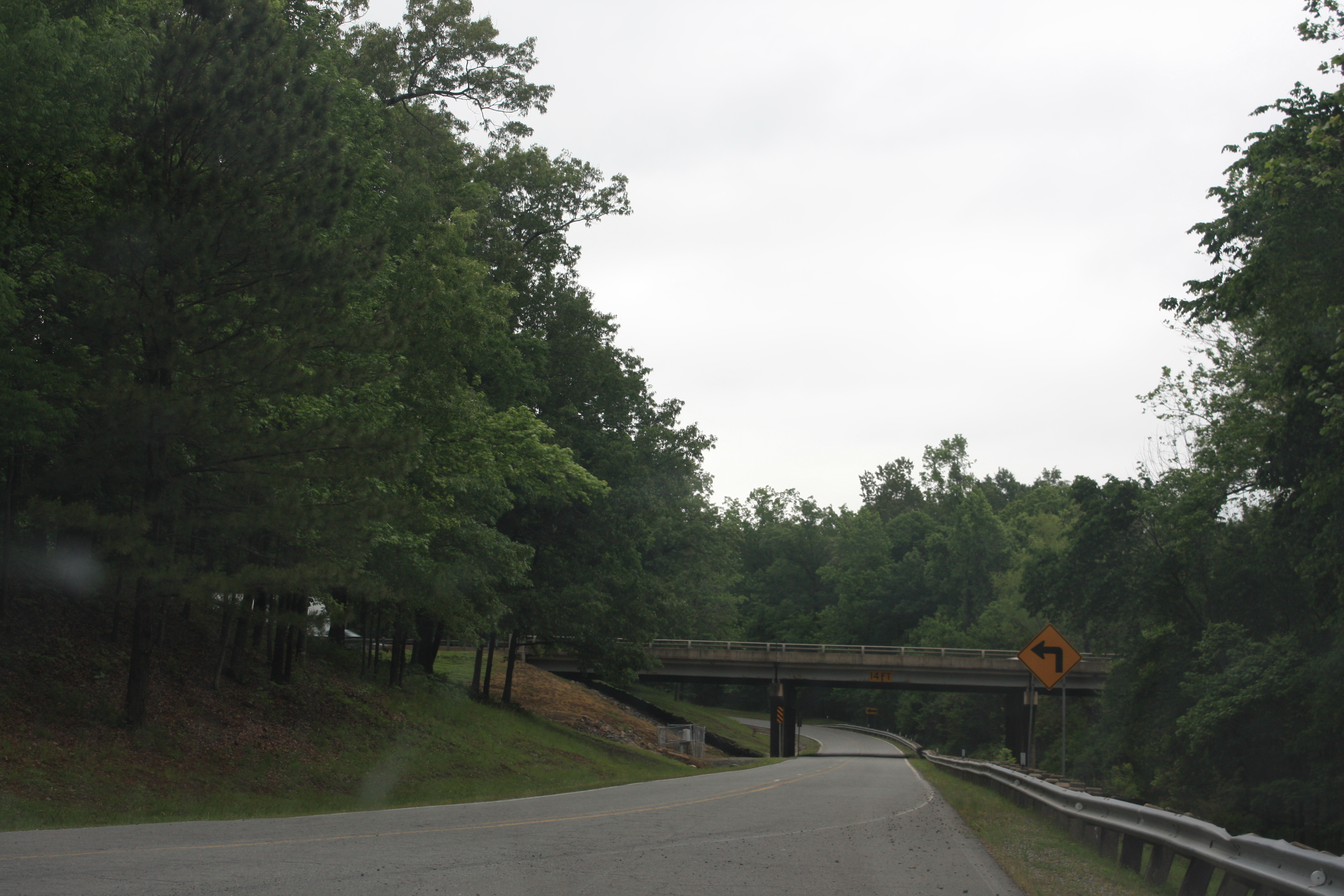 Arkansas Trees
