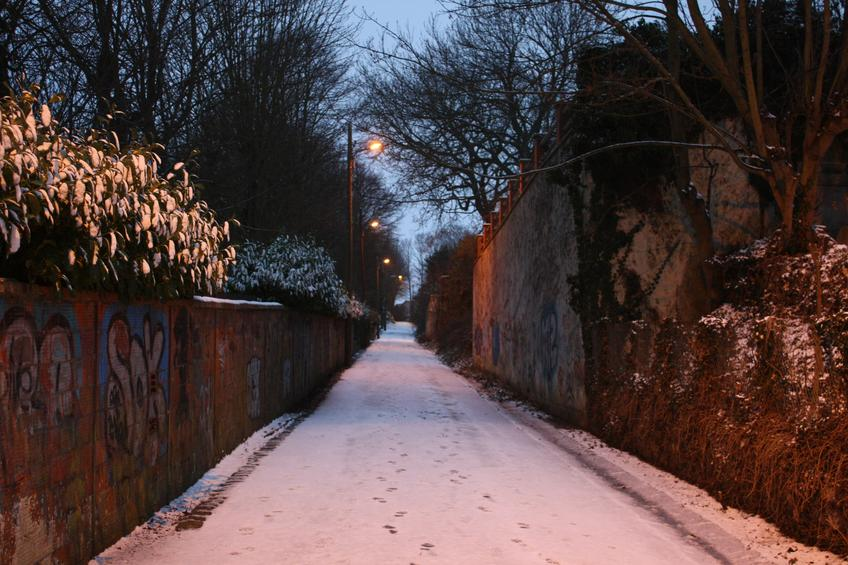 Snowy Lane — Photo 65 — Project 365