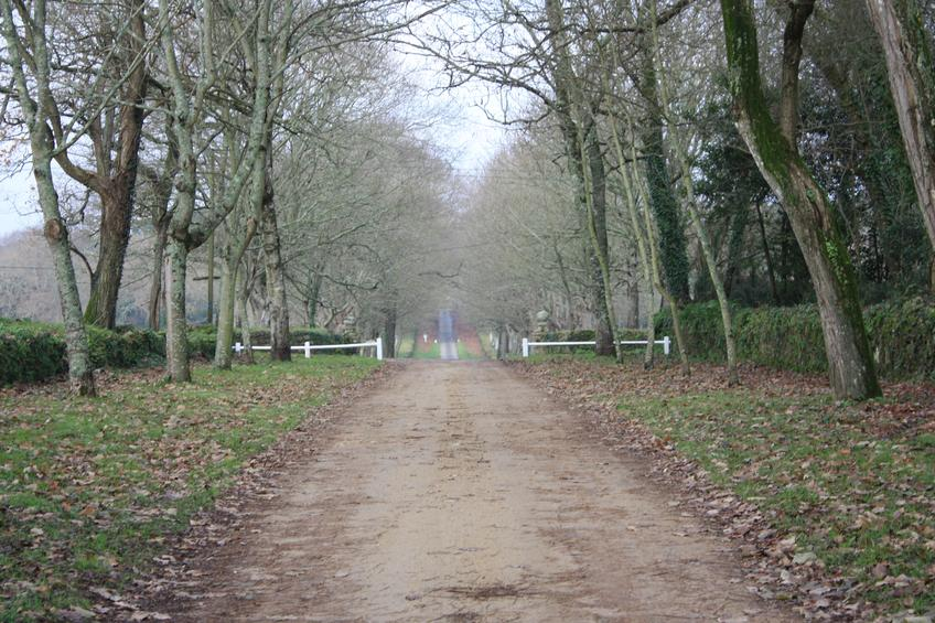 Country Driveway — Photo 70 — Project 365