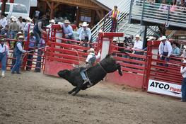 Bull Riding — Photo 91 — Project 365